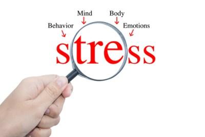 Stress coach på Djursland Laver fakta om stress