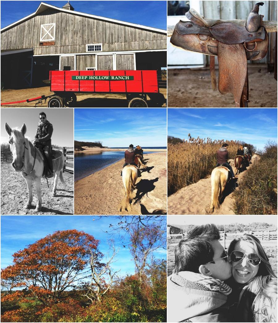 horsebackridingcollagemontauk