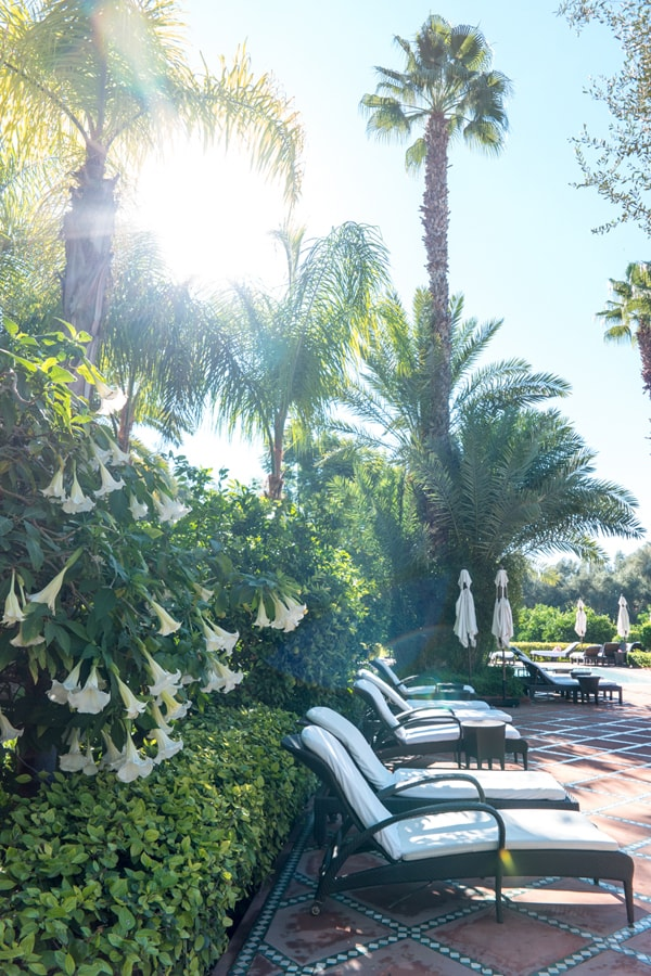 La Mamounia: Most Beautiful Hotel in Morocco