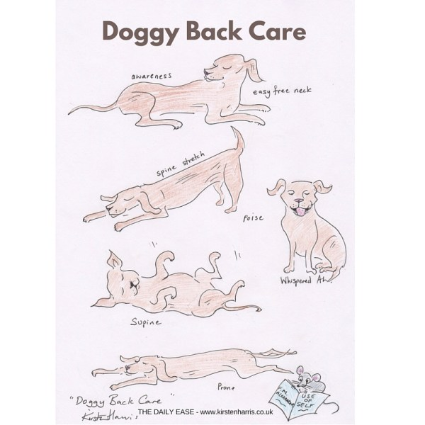 Doggy Back Care-3