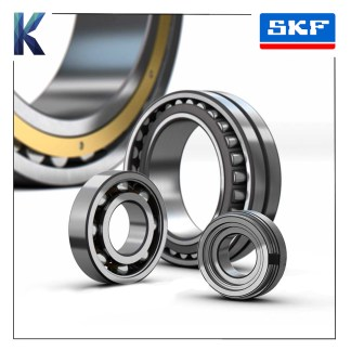 SKF Ball & Roller Bearings