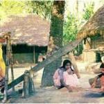 বৃহত্তম ময়মনসিংহের আঞ্চলিক ভাষা সংস্কৃতি ও উৎসব
