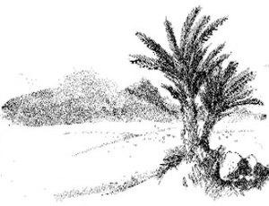 Dharabahik