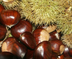 Chestnuts02