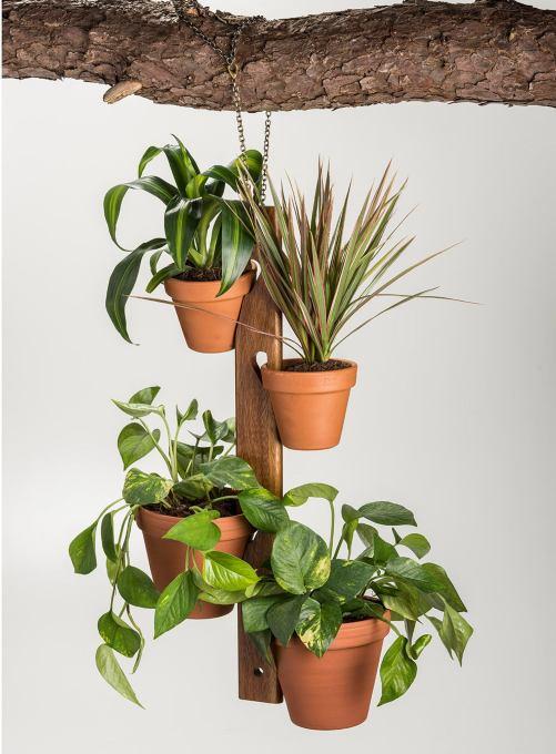 4 Pot Hang Plant Holder DIY Gardening Cutest Home Garden Decor Ideas
