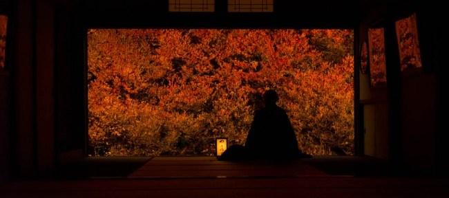 [Photolog] 2015年11月 安国寺のドウダンツツジ