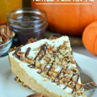 Turtle Pumpkin Pie
