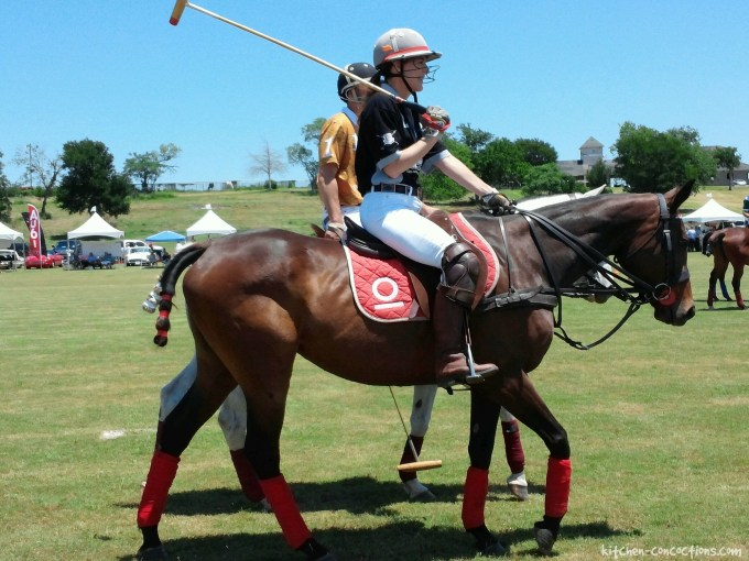Dishin' It Up – May 2016 polo match