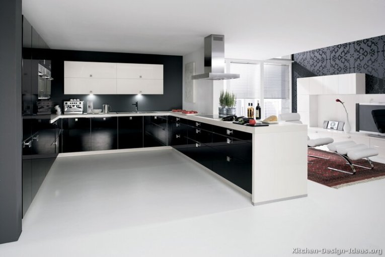 Contemporary Kitchen Cabinets   Pictures and Design Ideas A Black and White Kitchen with Contemporary Cabinets