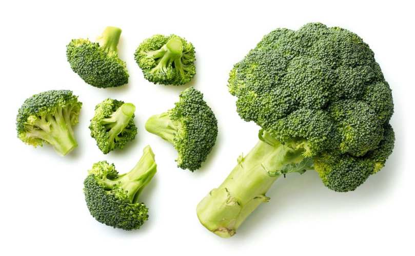 Brocolli on a white background.