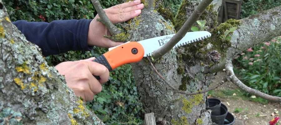 Video: A Round-Up of Fantastic Products for your Garden