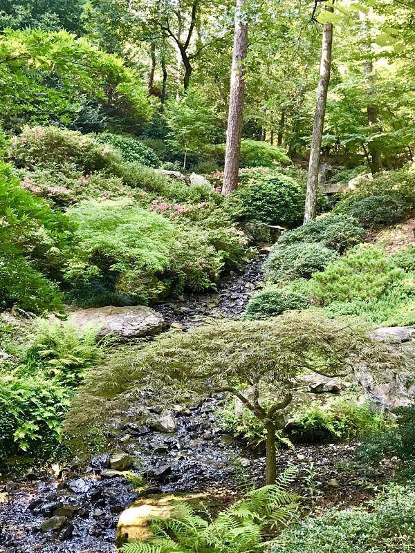 Hot Springs AR Garvan Woodland Gardens Kitchen Gone Rogue Review