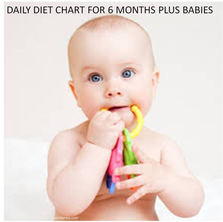 six months plus babies daily diet chart