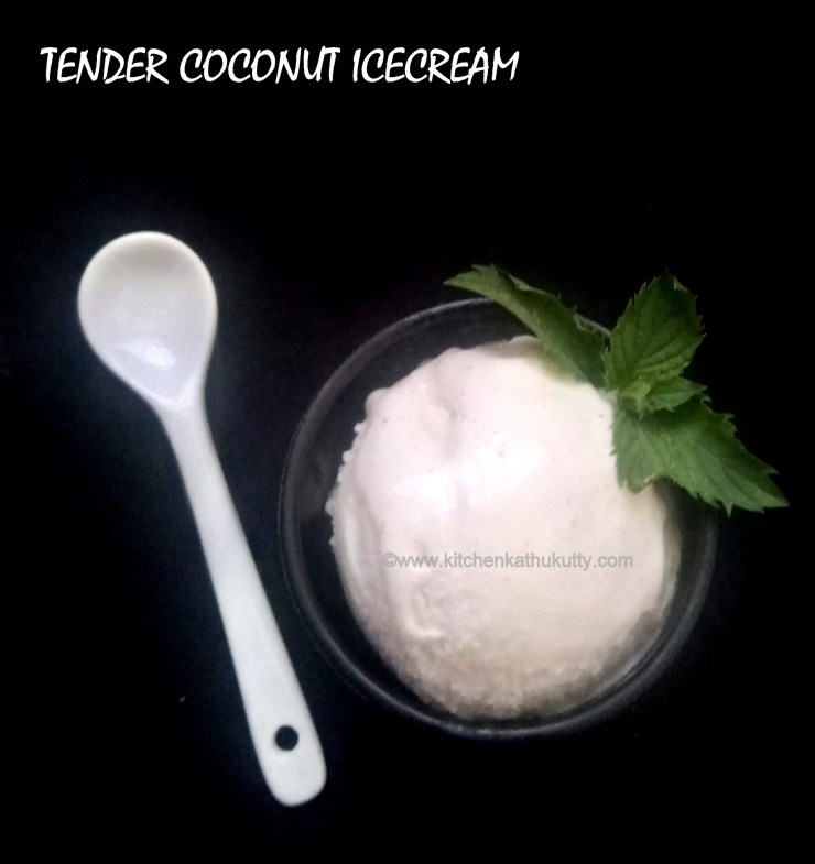 tender coconut icecream recipe