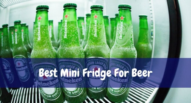 Best Mini Fridge For Beer