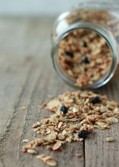 Homemade Granola Recipes Kitchen Treaty