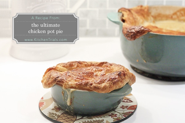 Worlds best chicken pot pie
