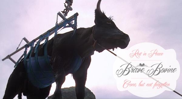 Jurassic park cow