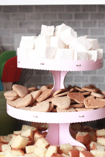 vintage pink party smores station