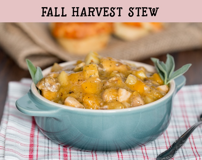 Fall harvest stew loaded with butternut squash, parsnips, potatoes, onions, apples, and chicken.