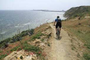 Mountainbiking with Pedal Freaks