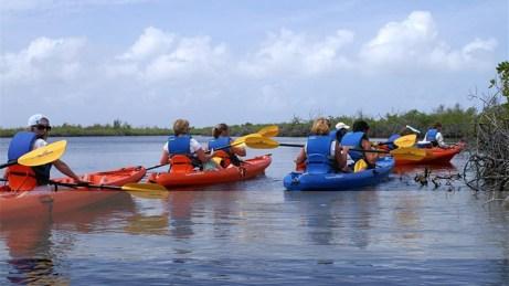 Kayak tours - Cayman Islands