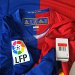 FCB08HLSL-NW-LFP%20(3).JPG