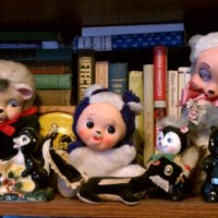 The Unintentional Skunk Collection