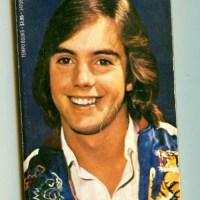 Those '70s Teen Idols
