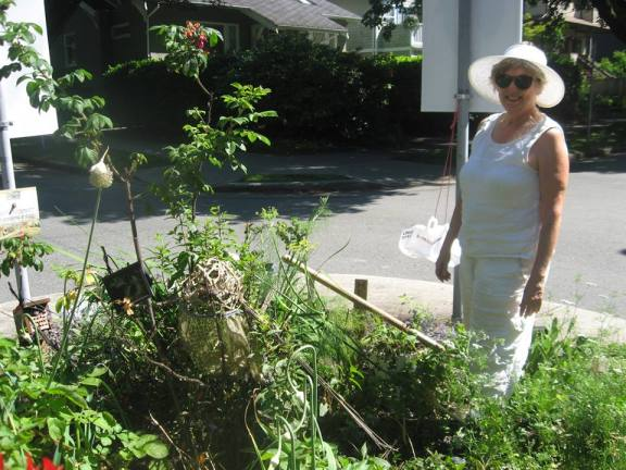 """Come and pick the herbs. Herb digging """"by appointment"""""""