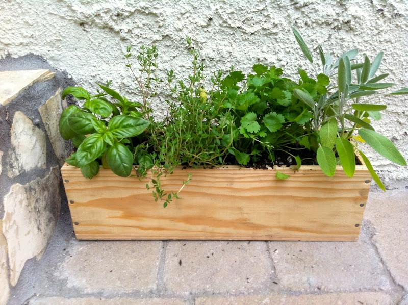 Herb-Garden-Box
