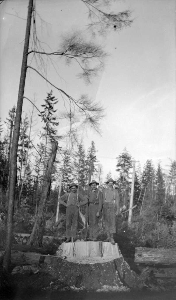 Image: Vancouver Archives, 1911, Three men on stump after felling a tree in Kitsilano forest, AM1584-: CVA 7-69 .