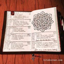 Jan 30 – Feb 5 in my Mandala (BuJo) Journal…..
