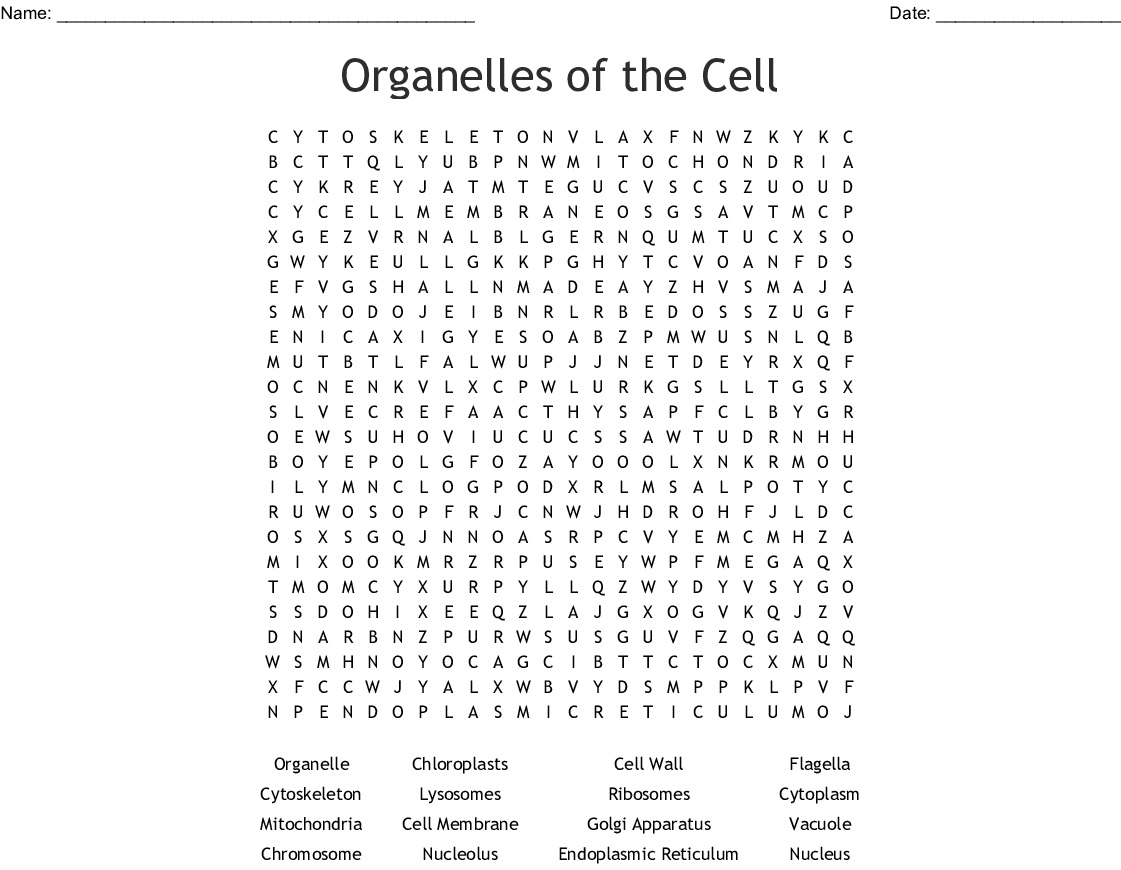 12 Interesting Cell Word Search Puzzles
