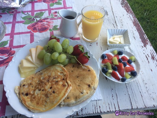 Our Stay at Horse Creek Stable Bed & Breakfast of Blue Ridge, GA - Breakfast