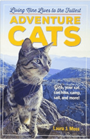 The 2017 Holiday Gift Guide for Adventure Cat Lovers