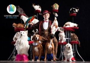 Popovich pet comedy pet show promo poster