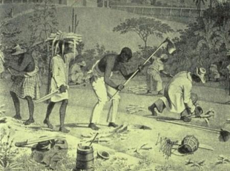 Slaves-in-Haiti