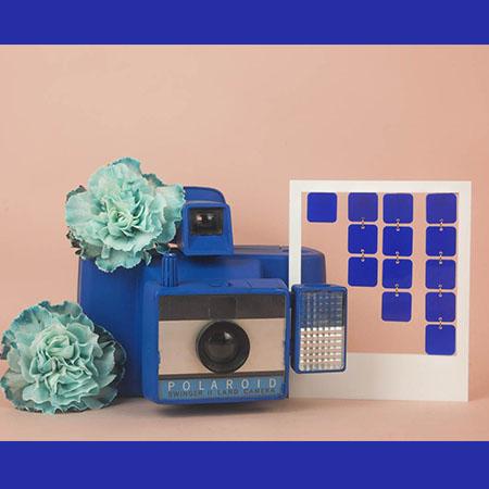 photo_miniature_georgette_bleu_electrique