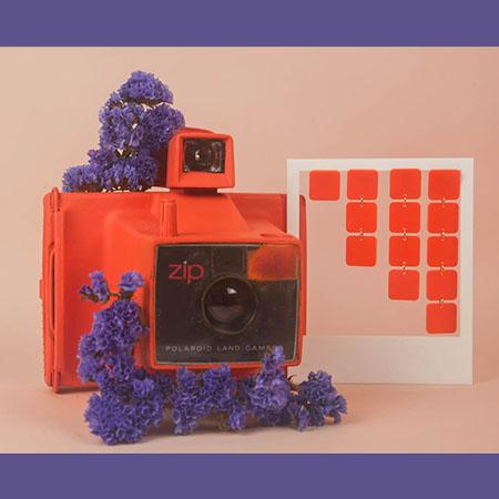 photo_miniature_georgette_orange