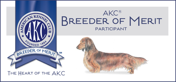 AKC Breeder of Merit banner