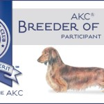 AKC Breeder of Merit banner