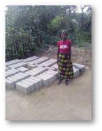 Um experimento em doação: Parte II - kiwanja.net 5