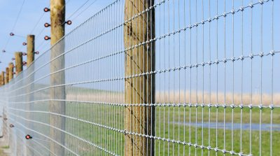commercial-agricultural-fencing-002