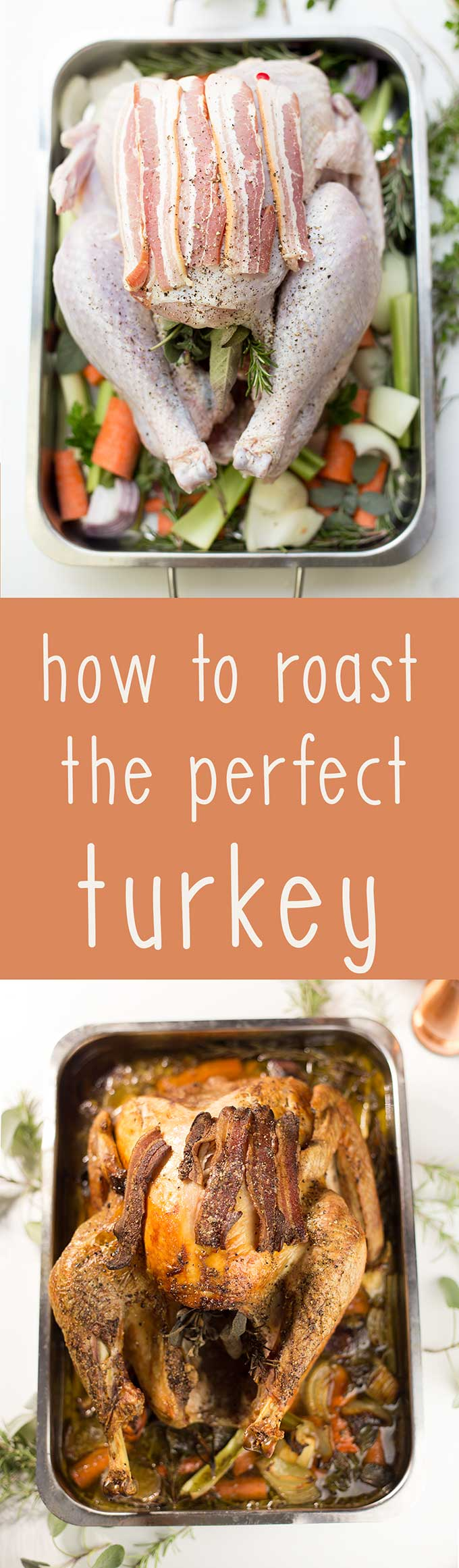 How to Roast the Perfect Turkey! Step-by-step directions to get a moist and delicious turkey, using fresh herbs and veggies in a flavorful broth.