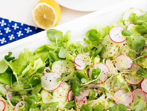 Butter lettuce and Watercress Salad: shaved cucumbers, radishes and shallots, tossed over delicate butter lettuce and watercress, and sprinkled with lemon zest and French vinaigrette.