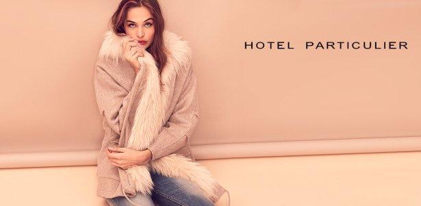 Hotel particulier