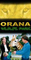 Orana-Park-Kiwi-Families.jpg
