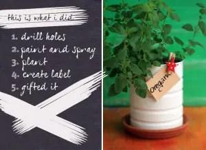 Herb-pots-steps
