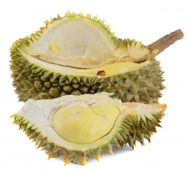Durian king of fruit isolated on white background